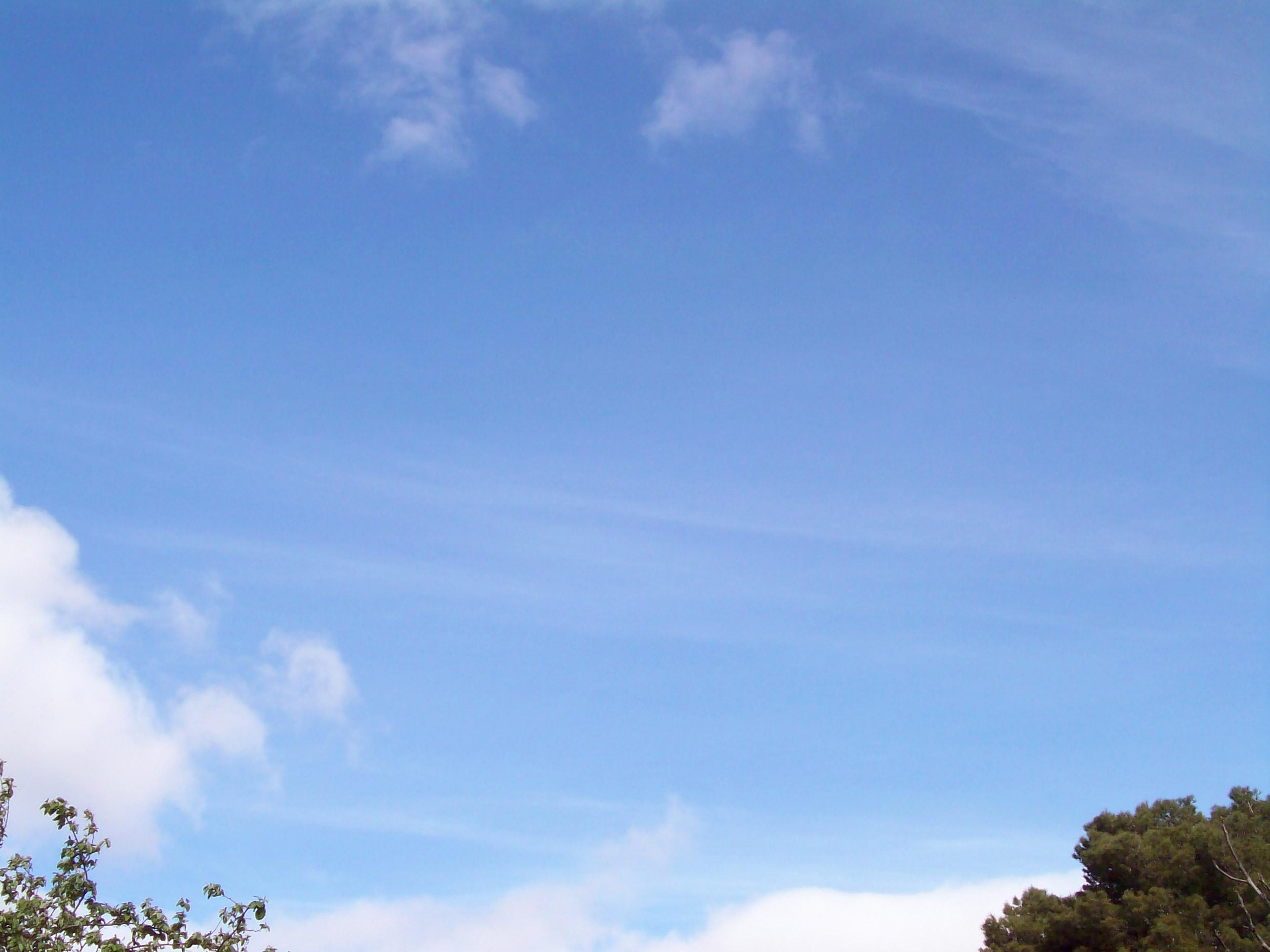 cielo-004   Levántate y anda